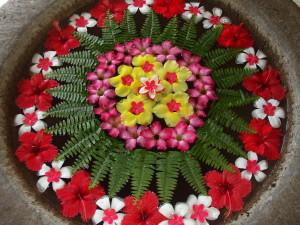 Bali - Fiori